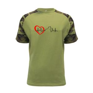Stafordšírsky bulteriér EKG - Raglan Military